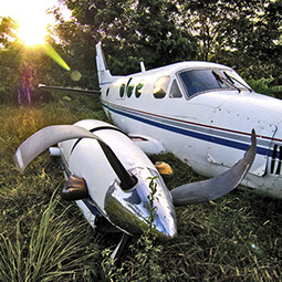 Airplane wreck in the jungle